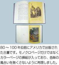 80~100年位前にアメリカで出版された古書です。モノクロページだけでなくカラーページの挿絵が入っており、色味の風合いを無くさないように再現しました。